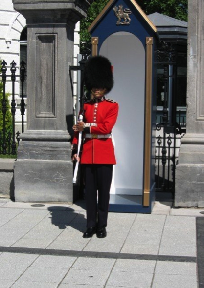 Sentry Duty Governor General S Foot Guards Regimental